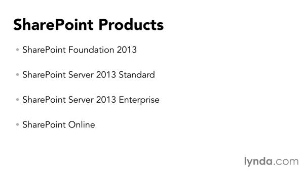 Understanding the SharePoint products: SharePoint Designer 2013: Branding SharePoint Sites