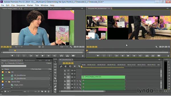 Welcome: Premiere Pro Guru: Multi-Camera Video Editing