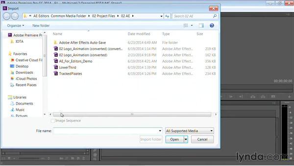 Importing files into Adobe Premiere Pro: Premiere Pro Guru: Multi-Camera Video Editing