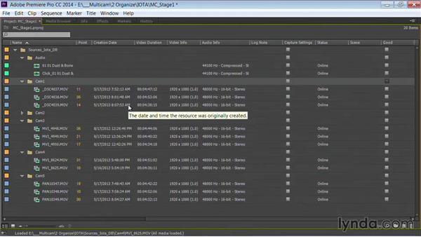 Customizing bin and clip views: Premiere Pro Guru: Multi-Camera Video Editing