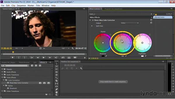 Initial white balance: Premiere Pro Guru: Multi-Camera Video Editing