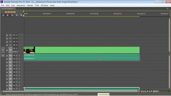 Handing off to Premiere Pro: Premiere Pro Guru: Multi-Camera Video Editing