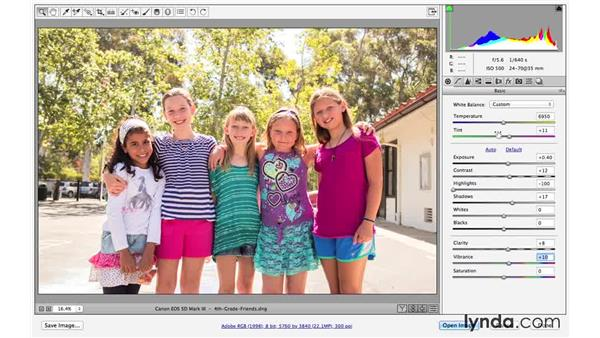 Making basic adjustments in Camera Raw: Creative Blurring with Photoshop