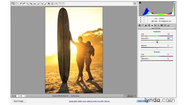 Improving color with Camera Raw: Creative Blurring with Photoshop