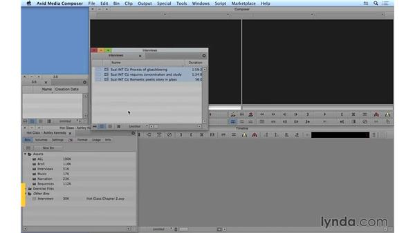 Accessing bins from other projects: Avid Media Composer 8 Essential Training