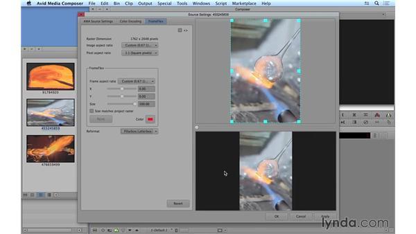 Exploring stills in a video environment: Avid Media Composer 8 Essential Training