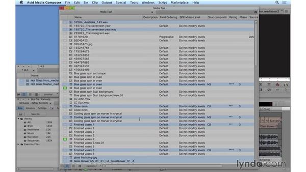 Cleaning up your projects by deleting unreferenced clips: Avid Media Composer 8 Essential Training