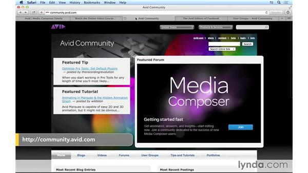 Next steps: Avid Media Composer 8 Essential Training