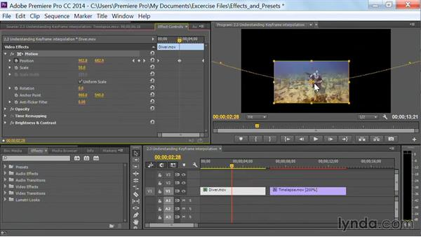 Welcome: Premiere Pro Guru: Effects and Preset Management