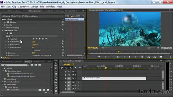 Masking effects: Premiere Pro Guru: Effects and Preset Management