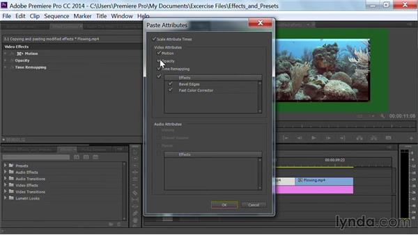 Copying and pasting modified effects: Premiere Pro Guru: Effects and Preset Management