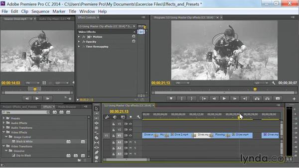 Using master clip effects: Premiere Pro Guru: Effects and Preset Management