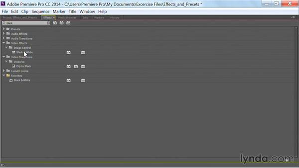Get organized with custom and preset bins: Premiere Pro Guru: Effects and Preset Management