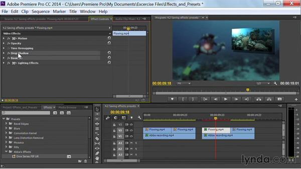 Save multiple effects presets: Premiere Pro Guru: Effects and Preset Management