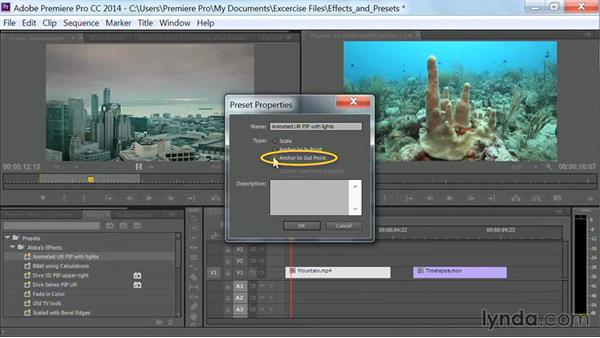 Applying effect presets: Premiere Pro Guru: Effects and Preset Management