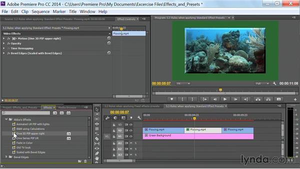 Rules when applying standard effects presets: Premiere Pro Guru: Effects and Preset Management