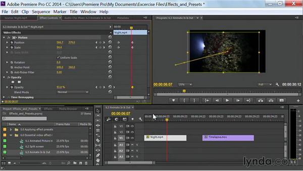Animate in and out: Premiere Pro Guru: Effects and Preset Management