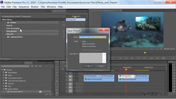 Next steps and goodbye: Premiere Pro Guru: Effects and Preset Management