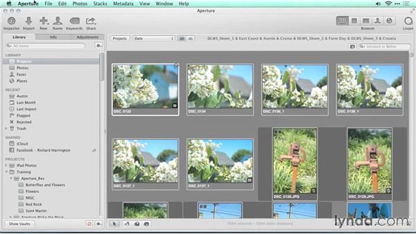 Choosing a subfolder approach: Migrating from Aperture to Lightroom