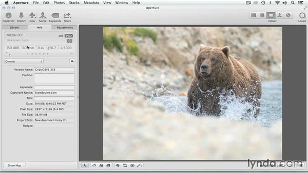 What is IPTC metadata?: Migrating from Aperture to Lightroom