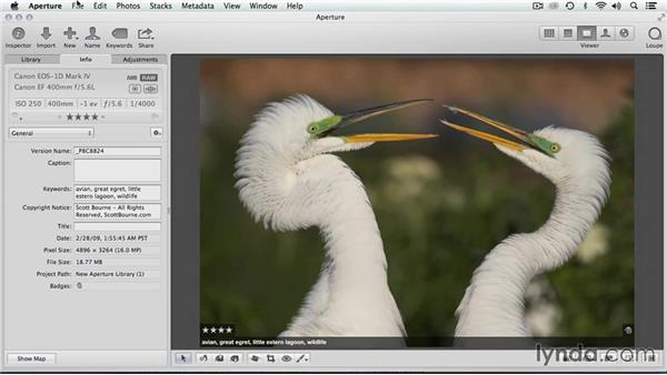 Write IPTC to originals (masters): Migrating from Aperture to Lightroom
