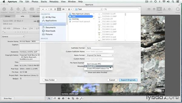 Writing sidecar (XMP) files: Migrating from Aperture to Lightroom
