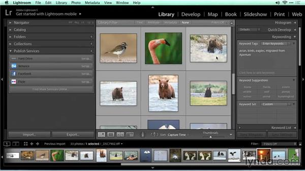 Adding metadata: Migrating from Aperture to Lightroom