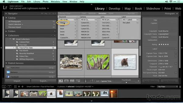 Searching with filters: Migrating from Aperture to Lightroom