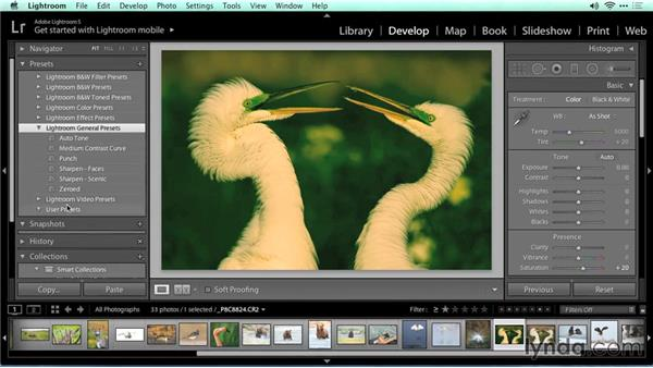 Wrapping up: Migrating from Aperture to Lightroom