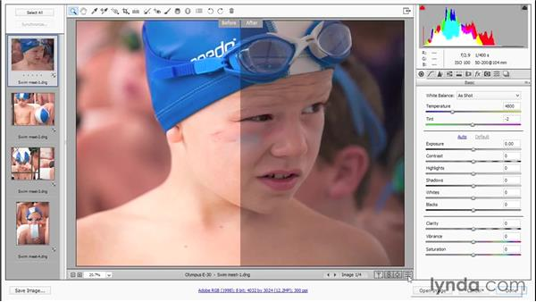 Previewing and applying your changes (CC 2014): Photoshop CC 2013 One-on-One: Advanced
