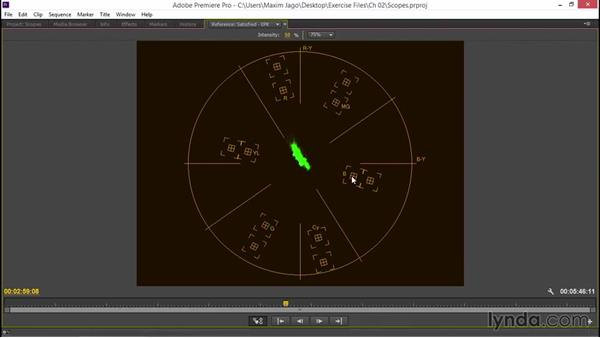 Judging video with the vectorscope and waveform: EPK Editing Workflows 03: Color Correction, Visual Effects, and Finishing