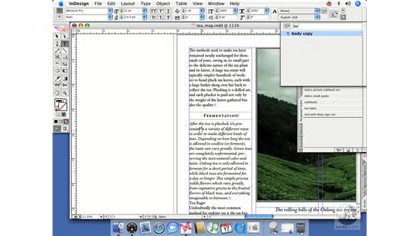 Quick apply: InDesign CS2 Beyond the Basics