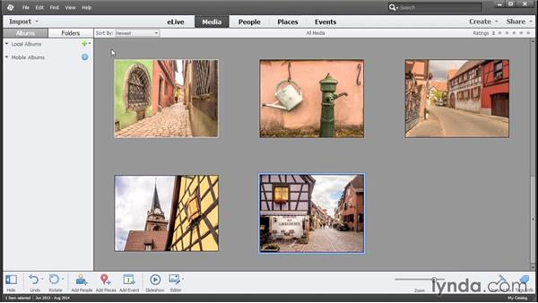 Viewing imported photos in the Organizer: Photoshop Elements 13 Essential Training