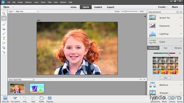 Making color adjustments in Quick Edit: Photoshop Elements 13 Essential Training