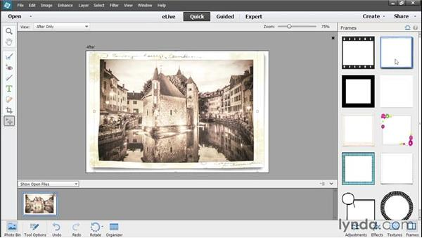 Adding effects, textures, and frames in Quick Edit: Photoshop Elements 13 Essential Training