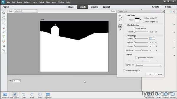 Fixing a selected area in Quick Edit: Photoshop Elements 13 Essential Training