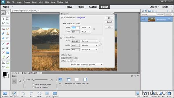 Resizing photos: Photoshop Elements 13 Essential Training