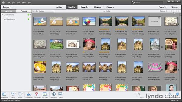 Overview of the Organizer: Photoshop Elements 13 Essential Training