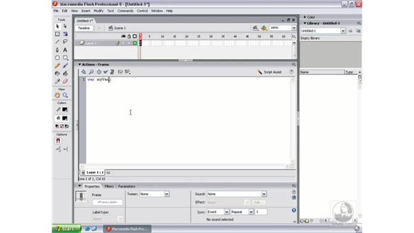 What are variables?: Flash Professional 8 Beyond the Basics