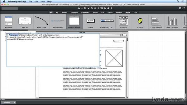 Formatting the control types: UX Design Tools: Balsamiq Mockups