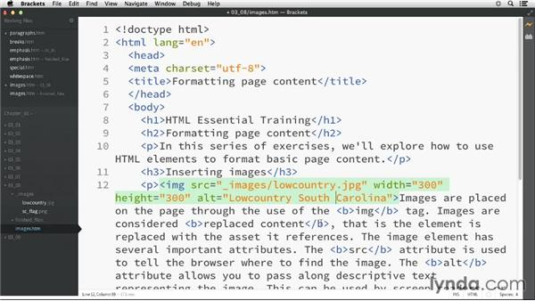 Displaying images: HTML Essential Training