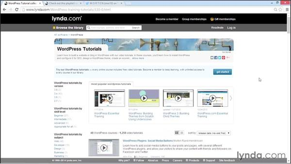Going further with WordPress: WordPress Developer Tips: Managing Users in the Database
