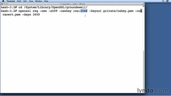 Generating a server certificate: Understanding Secure Sockets Layer