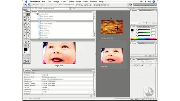 Color settings: Enhancing Digital Photography with Photoshop CS2