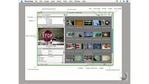 Bridge 101: Enhancing Digital Photography with Photoshop CS2