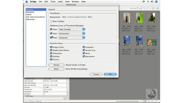 Bridge preferences 1: Enhancing Digital Photography with Photoshop CS2