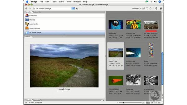 Bridge preferences 2: Enhancing Digital Photography with Photoshop CS2