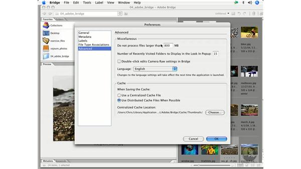 Bridge preferences 3: Enhancing Digital Photography with Photoshop CS2