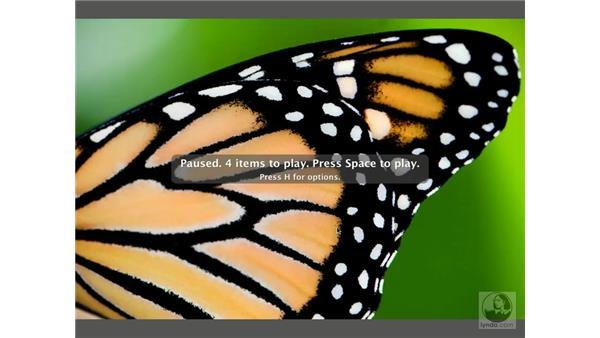 Bridge slideshow: Enhancing Digital Photography with Photoshop CS2