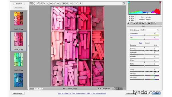 Working with multiple files (CC 2014.1): Photoshop CC for Photographers: Camera Raw 8 Fundamentals